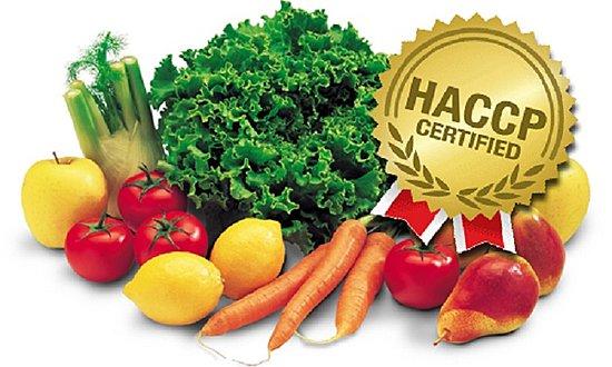 Сертификация пищевой продукции в мо обязательная сертификация на сцепления